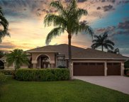 7936 Tiger Lily, Naples image
