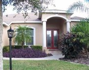 10551 Old Grove Circle, Bradenton image