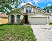 34725 Pinehurst Greene Way, Zephyrhills image