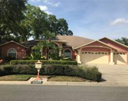 5303 Redfield Lane, Tampa image