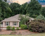 6130 SW COUNTY ROAD 18, Fort White image