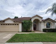 3212 Ibis Hill Street, Clermont image