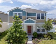 12820 Crested Iris Way, Riverview image