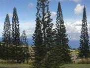 705 Mokuleia, Lahaina image
