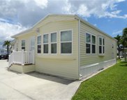 17186 Dragonfly Ln, Fort Myers image