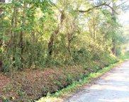 TBD Smalls Loop, Pawleys Island image