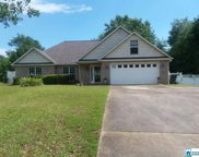 225 Seddon Farms Ln, Pell City image