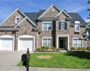 15038  Callow Forest Drive, Charlotte image