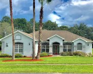 12041 Sapphire Drive, Spring Hill image