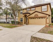 10643 Liberty Bell Drive, Tampa image