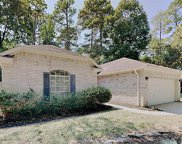 11 Indian Corn Place, The Woodlands image