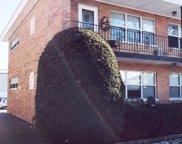 1235 Homestead Road Unit #E, La Grange Park image