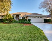 12006 Summer Meadow Drive, Lakewood Ranch image