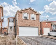 11 Courtlands Dr, Toronto image
