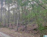 John Owens Road Unit 1 acre, Trussville image