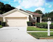 8914 Bridgeford Oaks, Tampa image