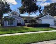 10406 Ashley Oaks Drive, Riverview image