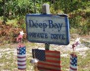 130 Deep Bay Drive, Newport image
