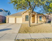 3265 Button Bush Drive, Fort Worth image