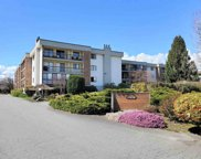 45650 Mcintosh Drive Unit 1206, Chilliwack image