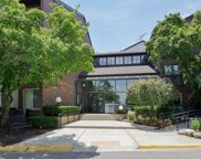 3085 Pheasant Creek Drive Unit 303, Northbrook image