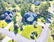1095 Yellow Jasmine Dr., Longs image
