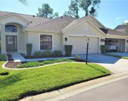 9718 Woodhollow Court, New Port Richey image