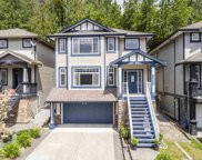 23635 111a Avenue, Maple Ridge image