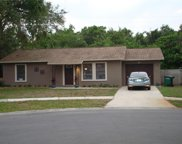 113 Meadowcross Drive, Safety Harbor image