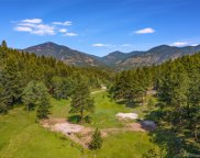 338 Red Lily Place, Evergreen image