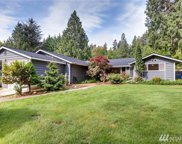 14717 206th Ave SE, Renton image