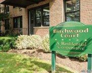 1 Birchwood Unit #1F, Mineola image