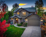7291 Timbercrest Lane, Castle Pines image