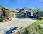 11512 Claymont Circle, Windermere image