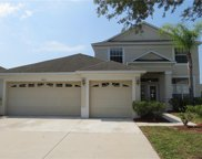 11403 Callaway Pond Drive, Riverview image
