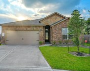 5646 Claymore Meadow Lane, Spring image