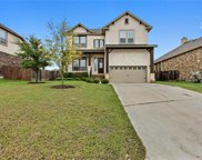 114 Willow Walk Cv, Austin image