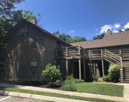 391 Moytoy Rd Unit 101, Crab Orchard image