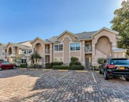 28631 Starboard Passage Way Unit 201, Bonita Springs image