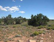 Lot 305 Chevelon Canyon Ranch, Heber image