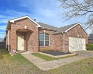1806 Pin Oak Trail, Anna image