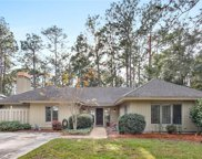 7 King Rail  Court, Hilton Head Island image