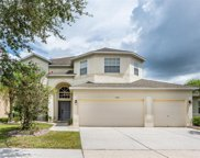11334 Callaway Pond Drive, Riverview image