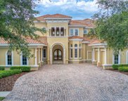 1191 Skye Lane, Palm Harbor image