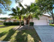 245 Allens Ridge Drive, Palm Harbor image