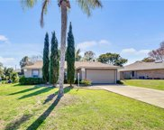 1342 Mount Pleasant Court, Deltona image