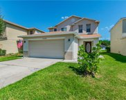 32328 Fish Hook Loop, Wesley Chapel image