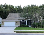 11741 Tee Time Circle, New Port Richey image