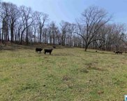 211 Co Rd 34 Unit 94.7 Ac, Camp Hill image