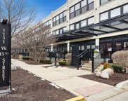 1151 West 15Th Street Unit 240, Chicago image